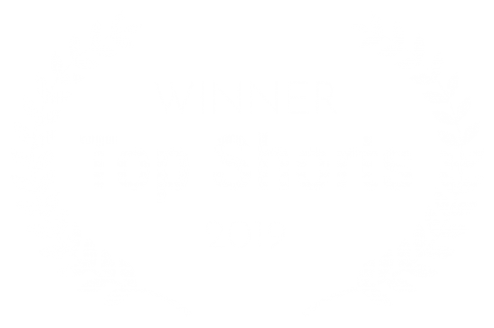 WINNER – Top Shorts – 2019